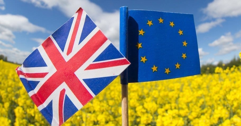 Union Jack and European flags in a field of Oilseed Rape