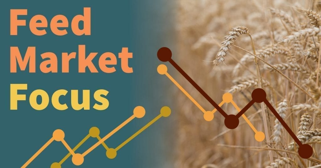 Graphic displaying feed market focus
