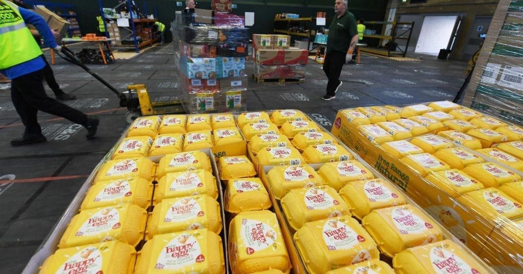 Picture of happy eggs in warehouse