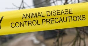 tape saying animal disease control precautions