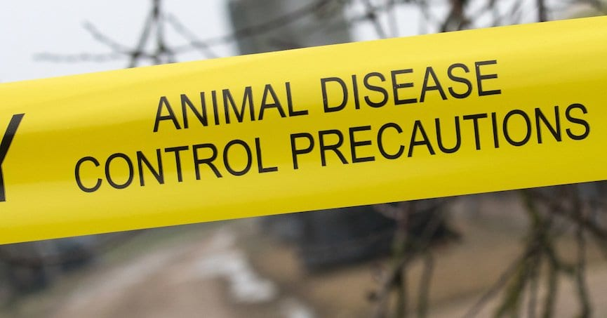 tape saying animal disease control precautions