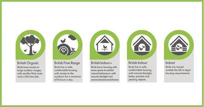 Lidl welfare labels