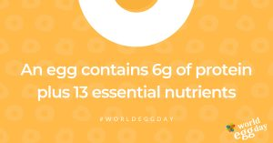 world egg day promotion saying an egg contains 6g of protein plus 13 essential nutrients